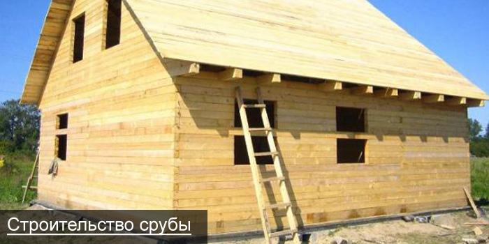 Дешёвый дом своими руками без опыта строительства 61